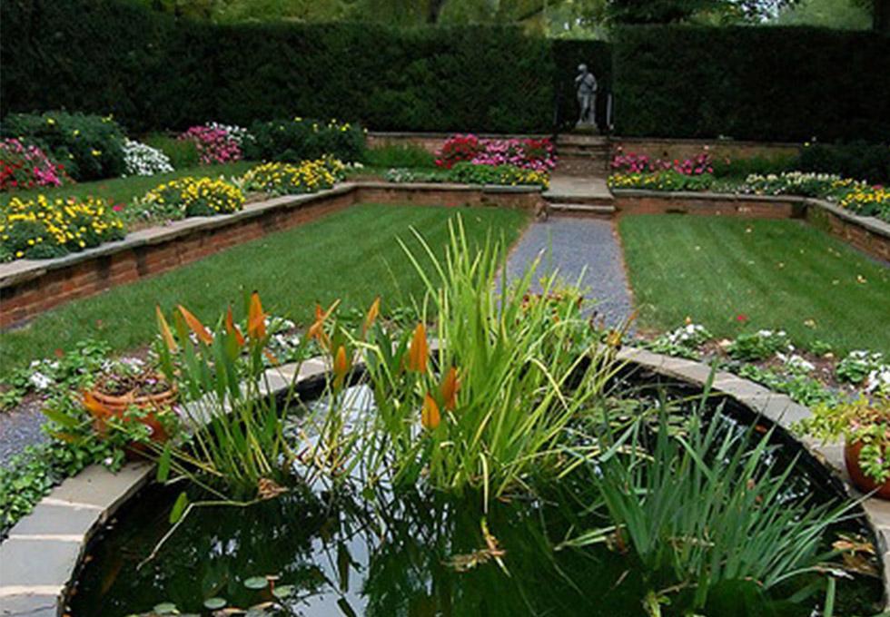 Natural circular pond