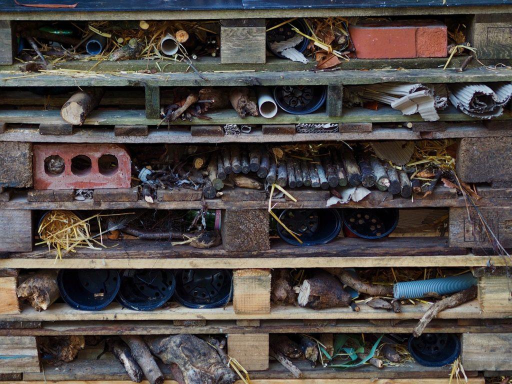 bug hotel wooden palettes in garden