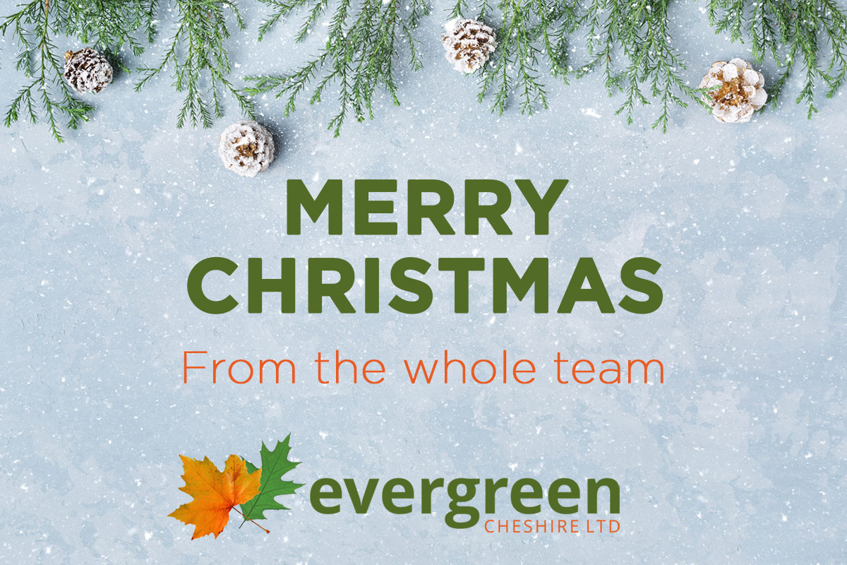 Evergreen Cheshire Christmas Opening Information